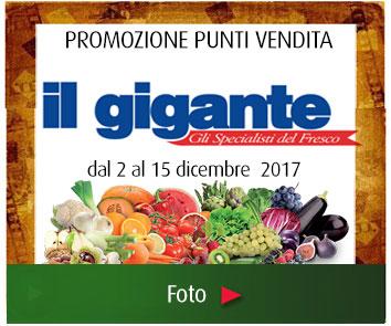 banner_IL-GIGANTE_dic_2017